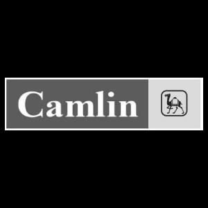 Camlin-logo